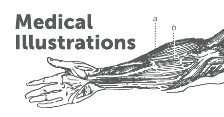 Stock Medical Illustration