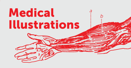 Stock Medical Illustration - Coming Soon!